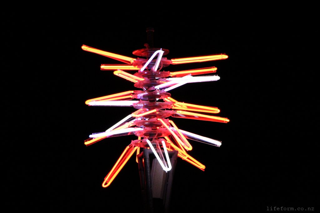 Neon Sculpture - Light Nelson 2014