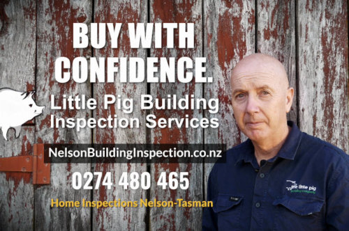 little pig building inspection services